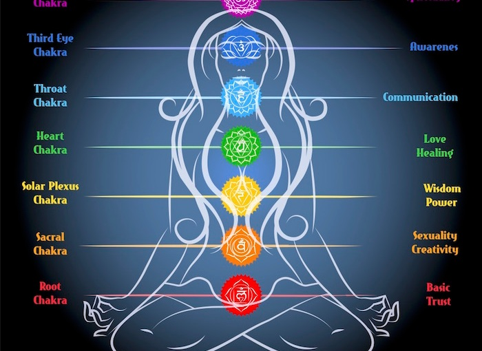 Chakras: The Root and Sacral Chakras