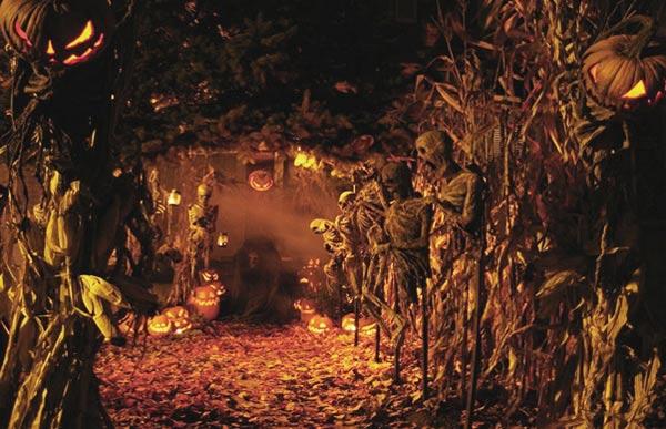 Symbols-of-Samhain-and-Halloween.jpg