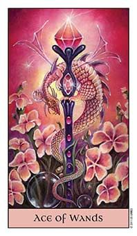 Tarot Series~Minor Arcana: Ace of Wands