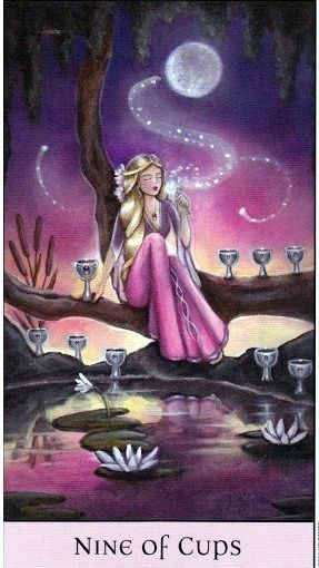 Tarot Series~Minor Arcana: Nine of Cups
