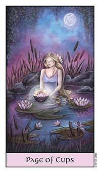 Tarot Series~Minor Arcana: Page of Cups